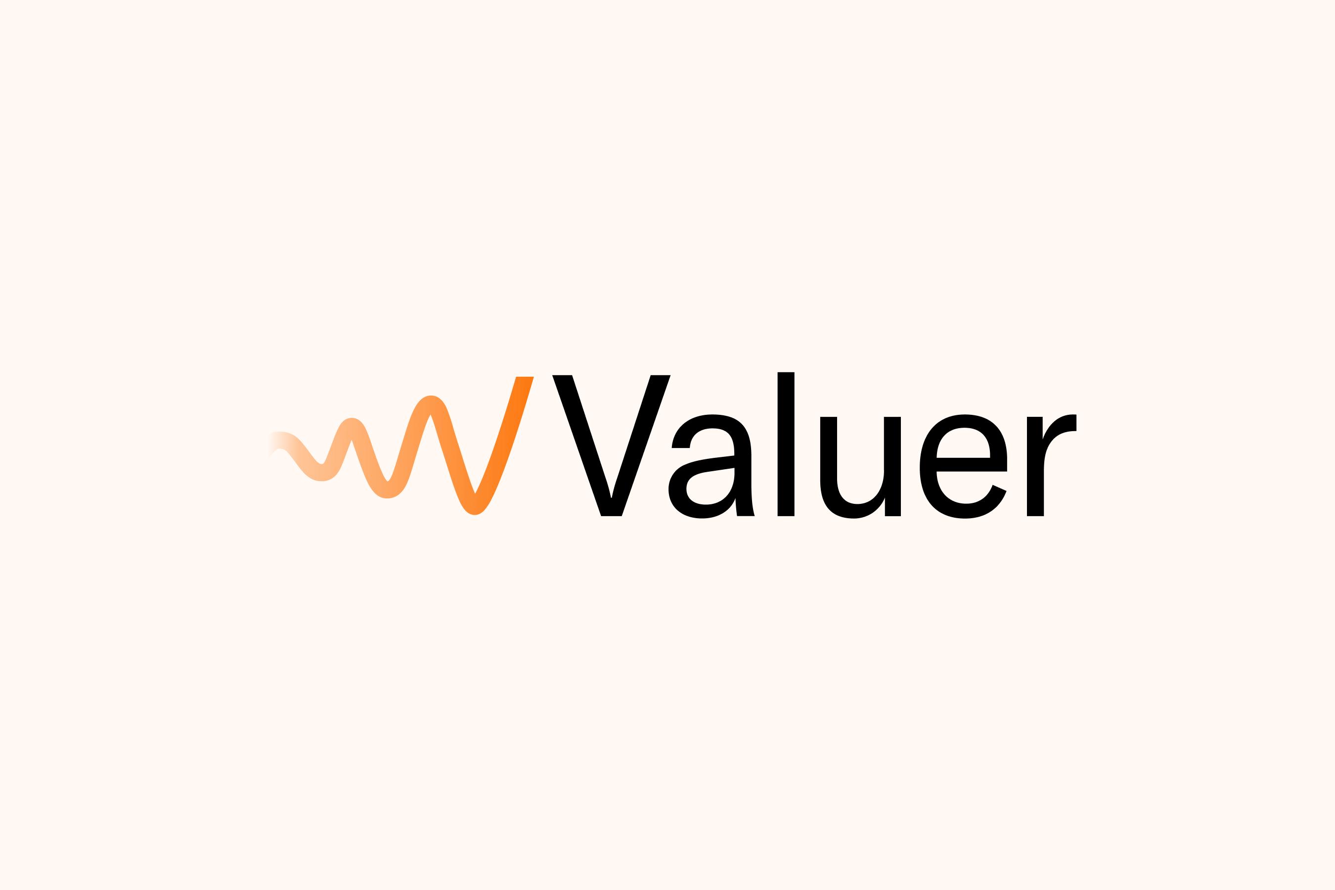 Valuer new logo