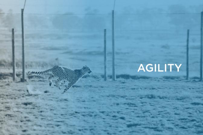 corporate agility Valuer