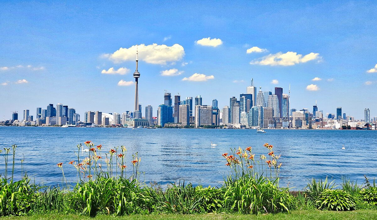 Toronto, Canada city skyline with water and plants in foreground