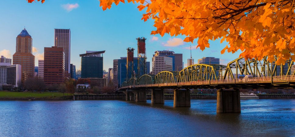 portland oregon orange leaves industrial bridge skyscrapers river and sky green park