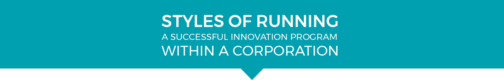 STYLES_OF_RUNNING_A_SUCCESSFUL_INNOVATION_PROGRAM_WITHIN_A_CORPORATION