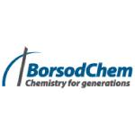 borsod chem logo blue and grey