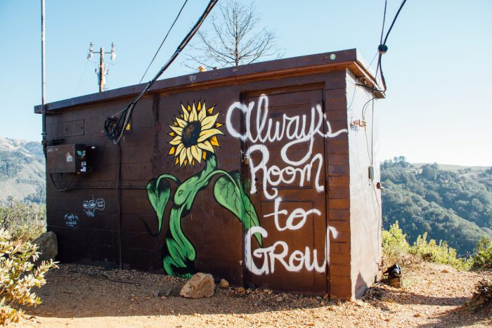 Always room to grow.