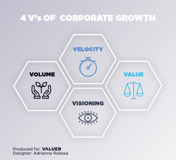 A graphic showing four hexagons showing the 4 V's of company growth