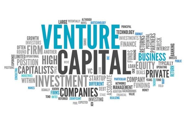 venture capital word chart