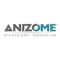 Anizome logo