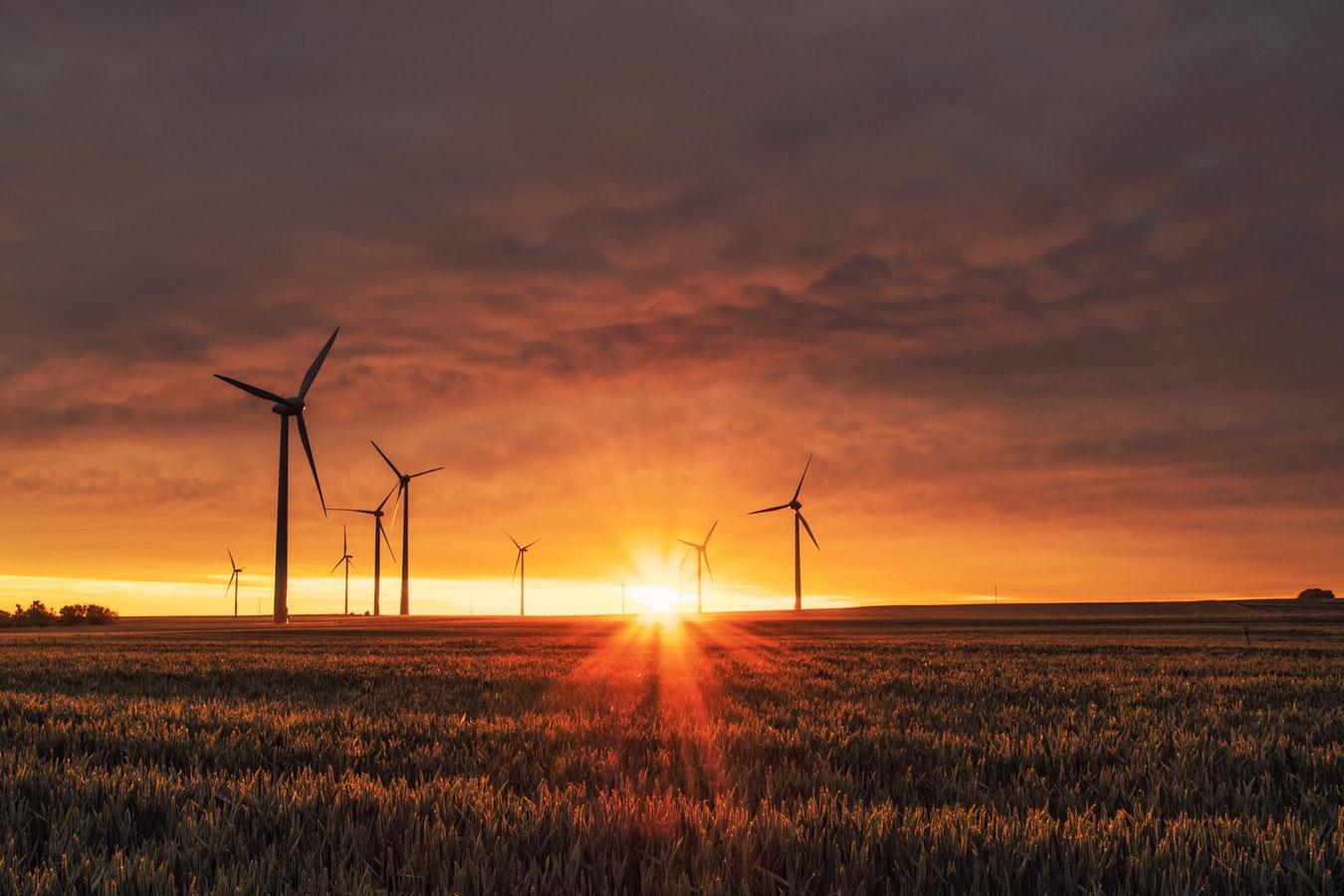 windturbines sunset