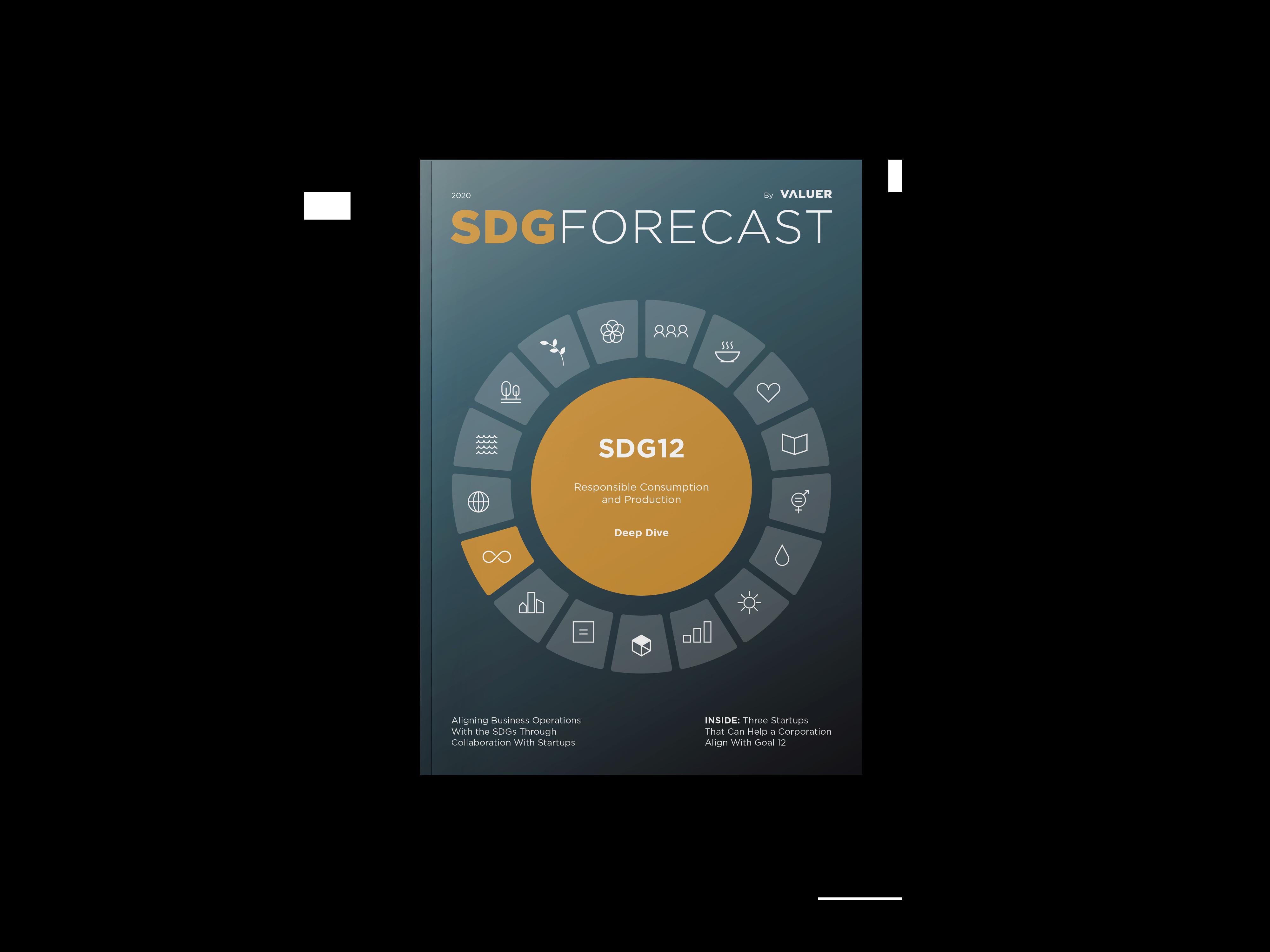 SDG12 COVER