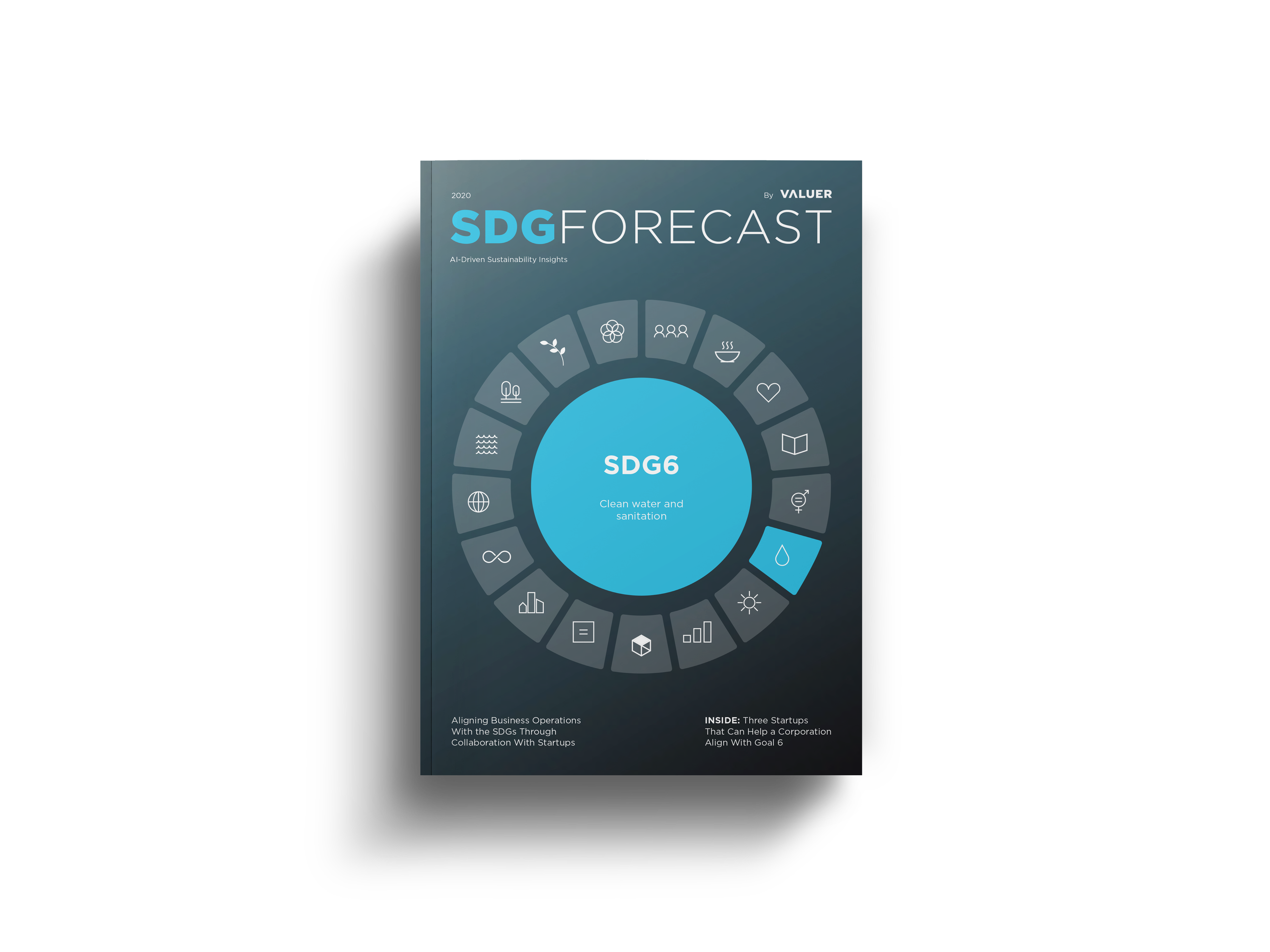 SDG6 COVER