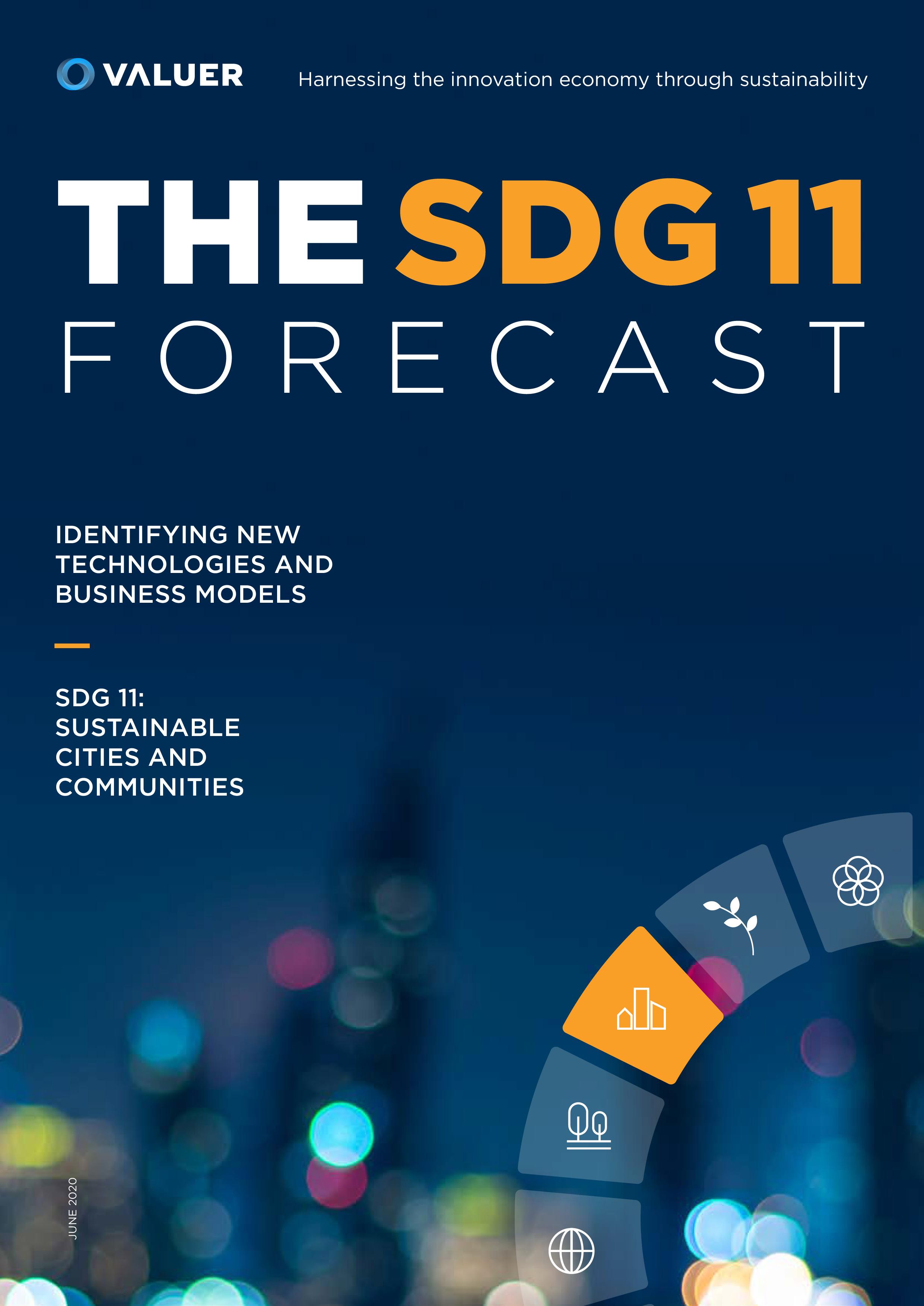 SDG 11 Cover